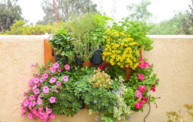 GLW10-100BT Vertical Garden Drip Irrigation Kit w/ Bluetooth Timer